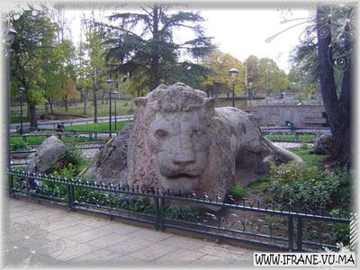 le lion d ifrane (face)