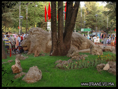 lion d ifrane (lateral)