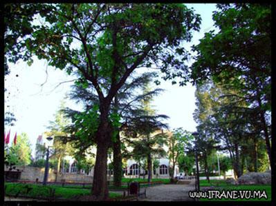 lion jardin