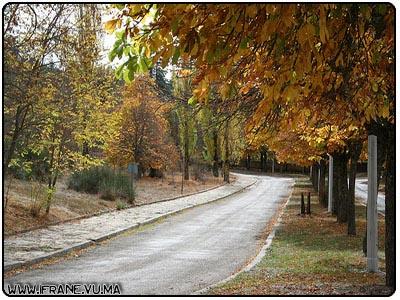 automne d ifrane