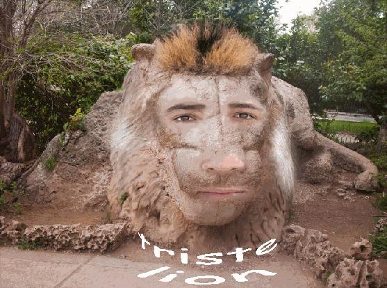 lion d ifrane