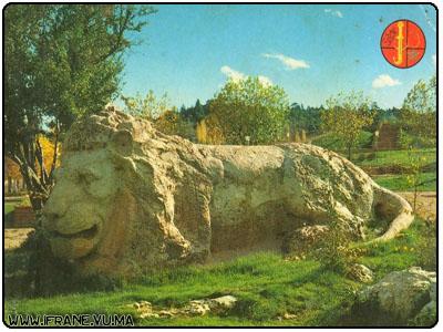 lion (encore jeune)